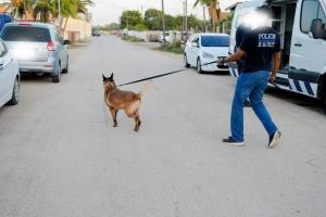 Polis a detene atracador den Koningstraat diasabra