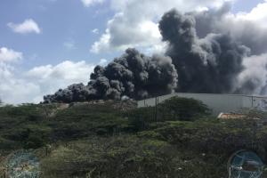 Stichting Parkietenbos: Candela na dump no por ripiti