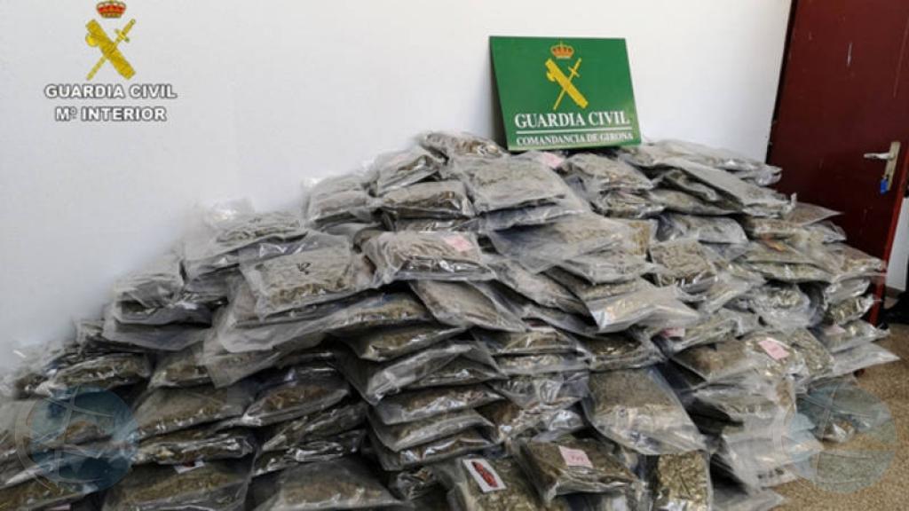 Autoridad Spaño a confisca 2700 kilo di marijuana na Catalonia