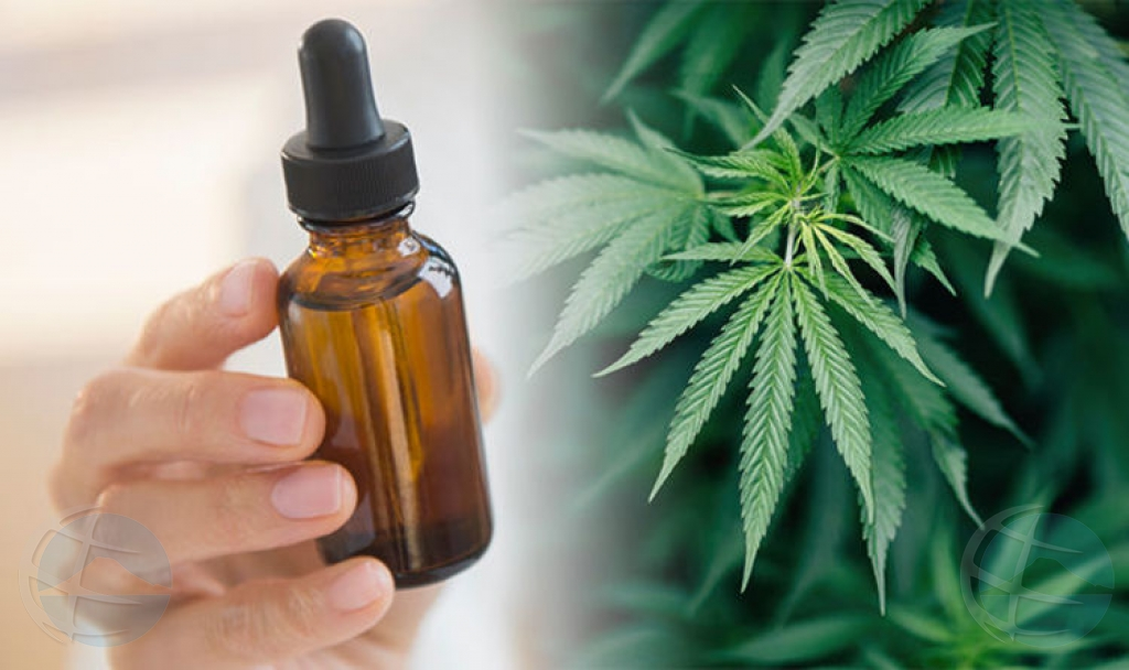 Aki 6 luna cannabis medicinal por ta legal pa uso na Aruba