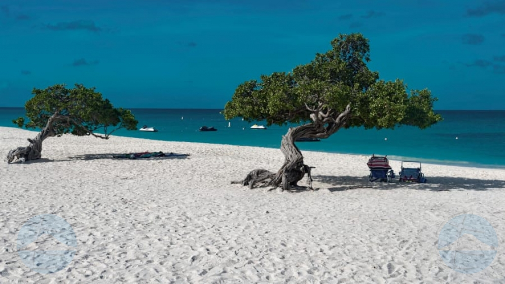TripAdvisor: Eagle Beach e beach # 3 di mundo pa 2019!