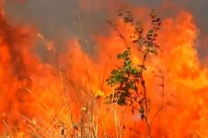 Candela den area di Amazona na Brazil ta aumentando alarmantemente
