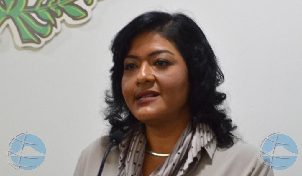 Pa falta di placa, Gobierno no por cumpli integralmente cu Aduana