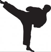 Aruba Karate Bond a distancia su mes di 'International Karate Cup 2019'
