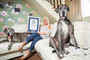 Guinness a registra e cacho di mas grandi na mundo