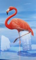 OM: Autoridad a haci inval na dos adres relaciona cu caso Flamingo