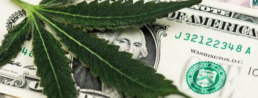 Wever: Banconan local ta un 'struikelblok' pa negoshi di cannabis na Aruba