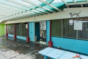 Aruba Bank a yuda Animal Shelter Foundation durante Drop-Off Day