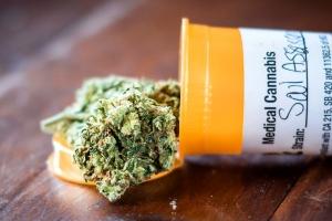Hopi interes di companianan pa cultiva y procesa cannabis medicinal na Aruba