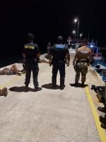 Wardacosta a detene 14 indocumentado den awanan teritorial di Aruba
