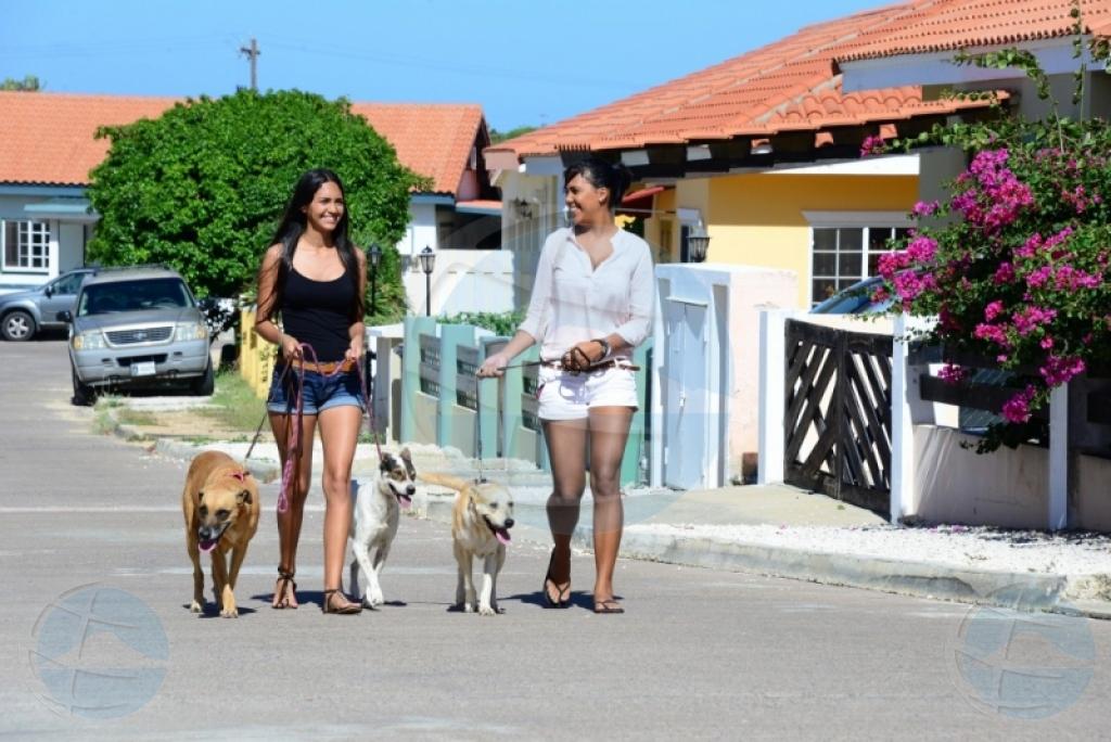Luna di mei ta Donation Drop Off Month di Aruba Animal Shelter