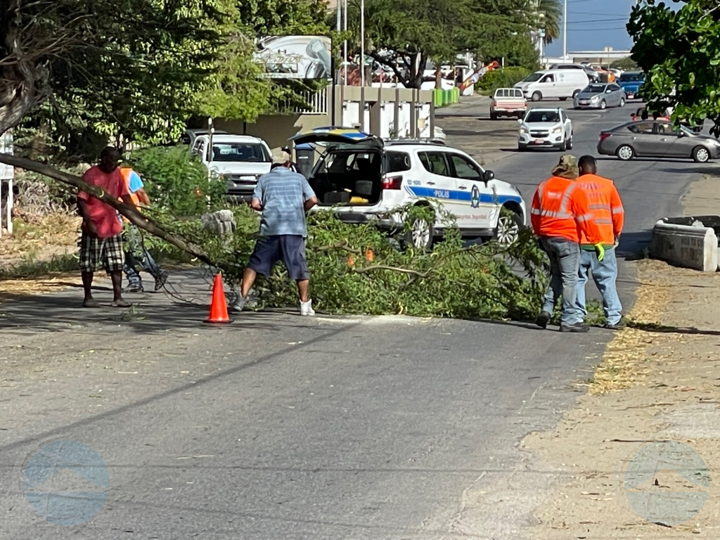 Mata grandi a cay riba parti di caminda di Avenida Milio Croes stroba trafico