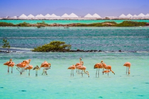 Bonaire a surpasa 100 caso activo di Covid19, pero no mester ahusta medida